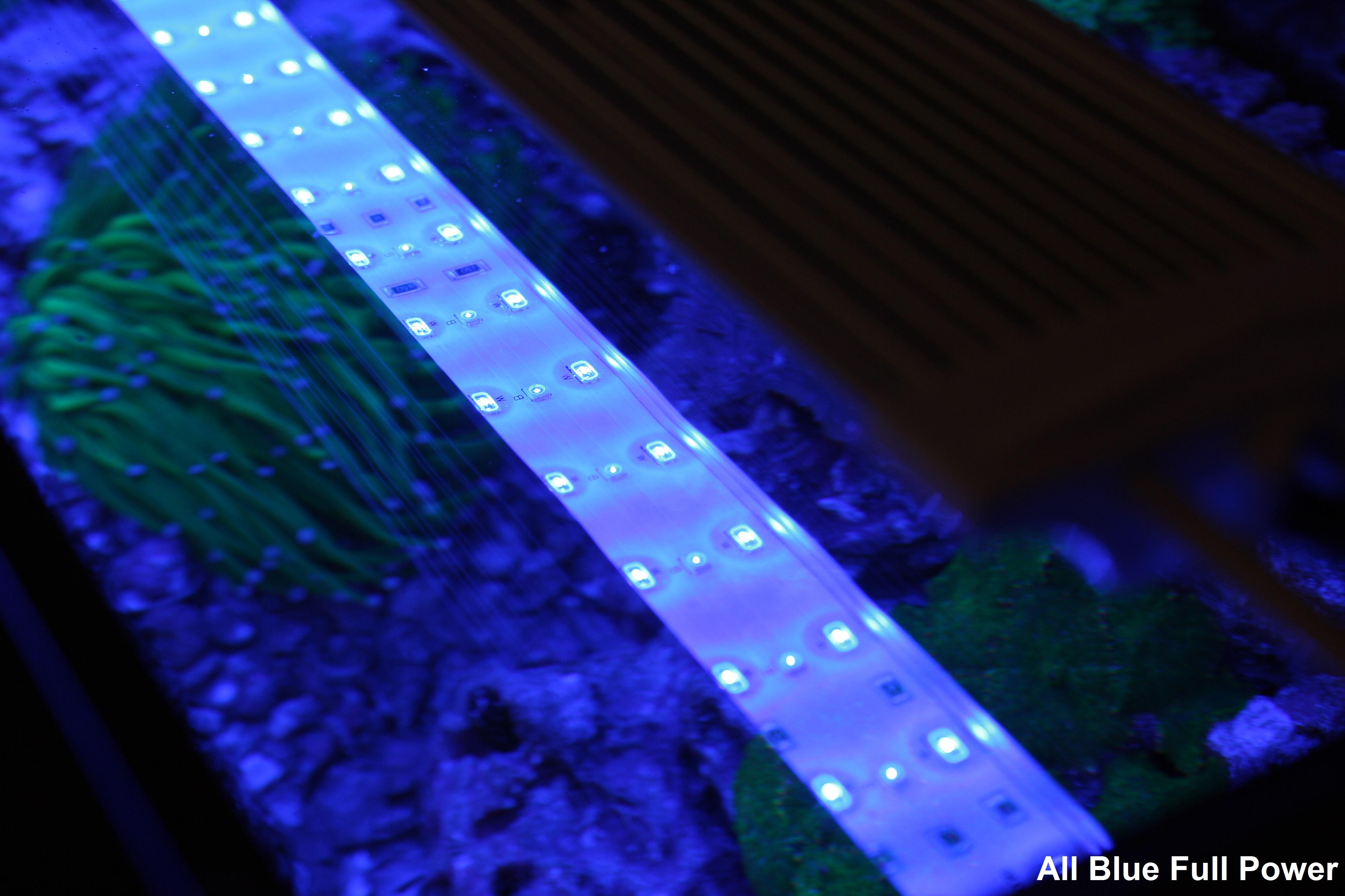 Zetlight Lancia ZP-4000-438 LED Waterproof Aquarium Light, 18-23in All Blue Gallery