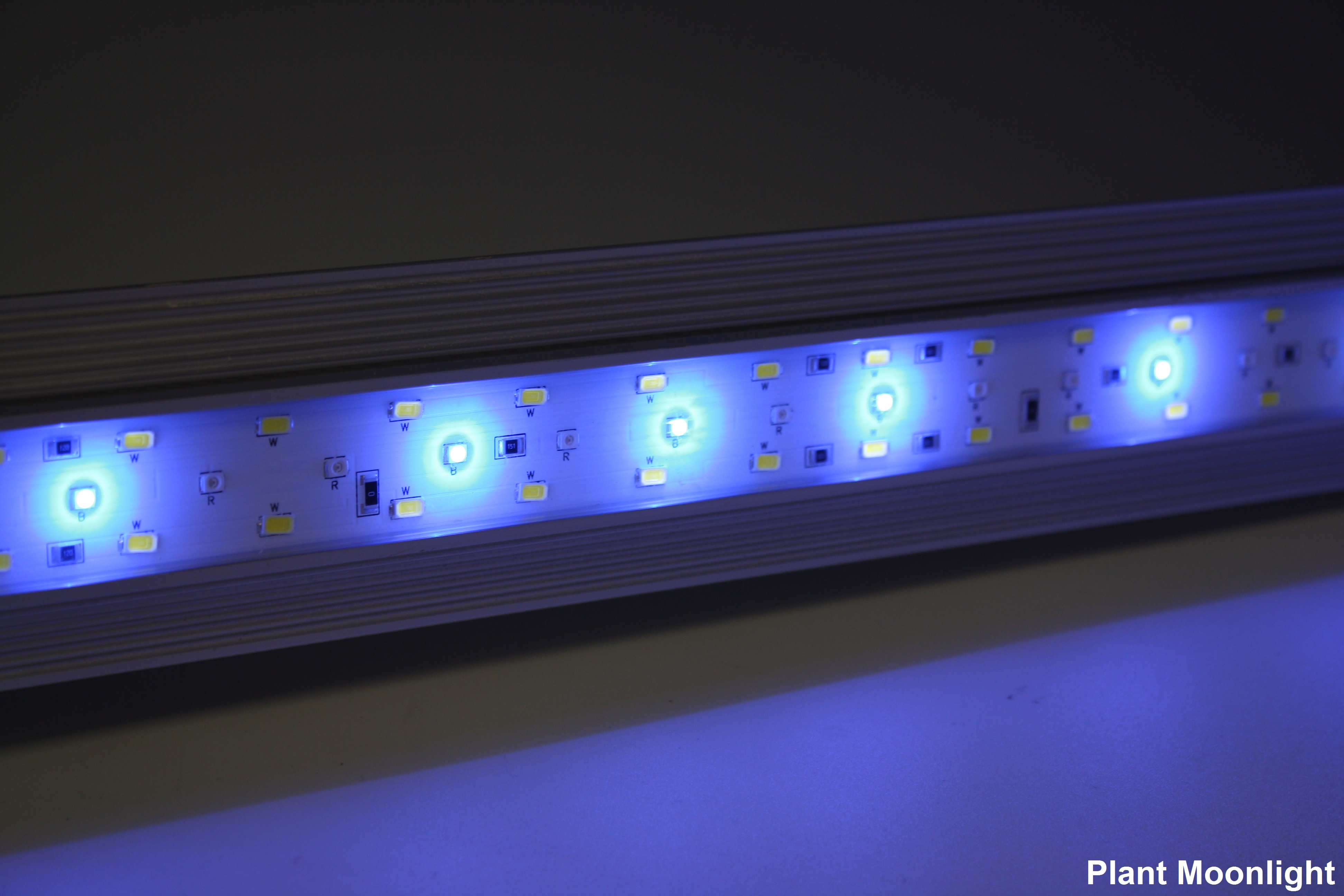 Zetlight Lancia ZP-4000-742 LED Waterproof Aquarium Light, 30-35in Plant Gallery