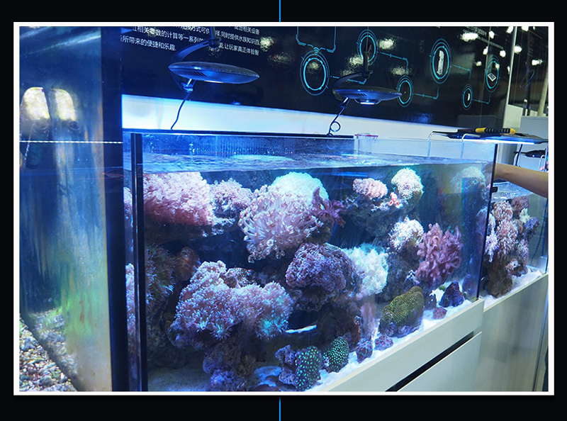Zetlight UFO ZE-8300 Marine 96W LED Reef Aquarium Light Gallery